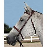 HDR Pro Stress Free Padded Bridle