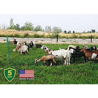 Electric Poultry and Goat Netting Green - Statelinetack com