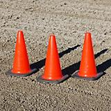 Burlingham Sports Trail Cones