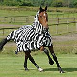 Bucas Zebra Fly Sheet