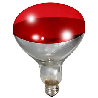 Brooder Red Heat Lamp Bulb