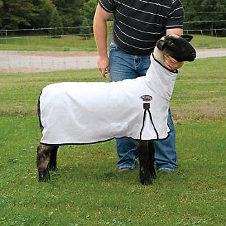 ProCool Mesh Sheep Blanket
