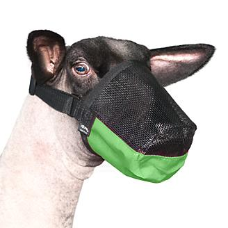 Deluxe Adjustable Goat and Sheep Muzzle