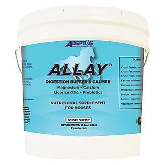 Adeptus Allay
