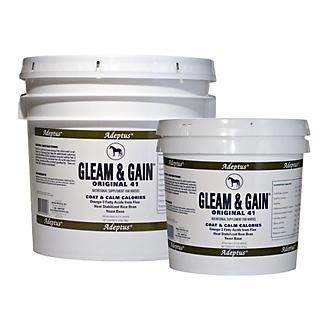 Adeptus Gleam & Gain