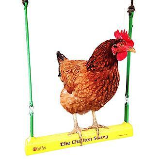 The Chicken Swing
