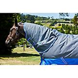 Weatherbeeta ComFiTec Thinsulate Neck Rug