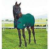 Weatherbeeta ComFiTec Dynamic Standard Foal Med