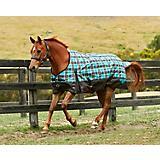 Saxon 1200D Standard Med Blanket 84 Teal Plaid