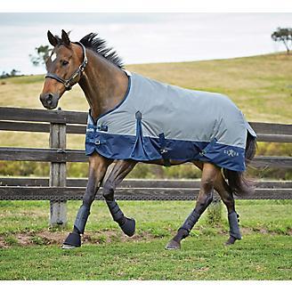 Saxon 600D Standard Medium Blanket