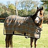 Kensington Traditional Pony Fly Sheet 50 Black Ice