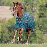 Shires Tempest Original 200 gram Turnout Blanket