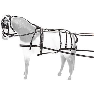 Tough-1 Mini Spotted Leather Show Driving Harness