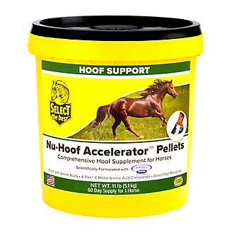 Select the Best Nu-Hoof Accelerator