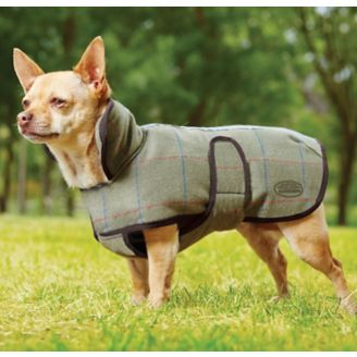 Weatherbeeta Tweed Dog Coat 12 Olive Horse Com
