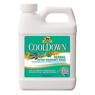Absorbine CoolDown After-Workout Rinse