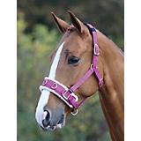 Shires Fleece Lined Lunge Cavesson FULL RASPBERRY