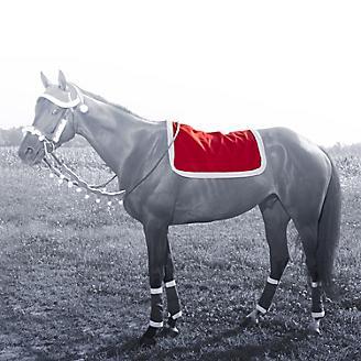 Holiday Santa English Pad Cover