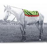 Holiday Elf Western Pad Cover