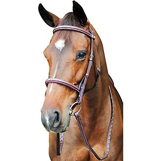 HDR Pro Fancy Raised Comfort Crown Padded Bridle