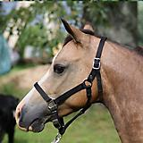 Weavers Tack Mini Breakaway Halter
