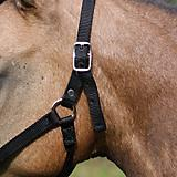Weavers Tack Mini Leather Breakaway Halter Tab