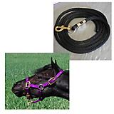 Premium Mini/Pony Nylon Halter with Lead
