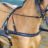 Mini Show Breast Collar/Buckle in Traces Pony Silv