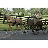 Ozark Mini/Pony Carriage Harness