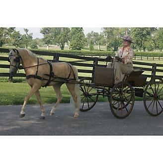 Ozark Mini/Pony Carriage Harness
