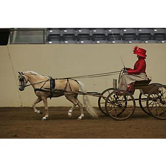 Ozark Mini/Pony V Carriage Harness
