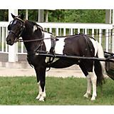 CDE Mini/Pony Formal Driving Harness