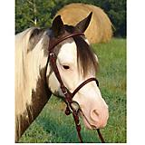 Ozark Mini/Pony English Leather Bridle