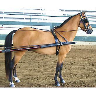 Ozark Dual Headstall Leather Pony Show Harness