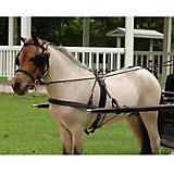 Millers Harness Show Headstall