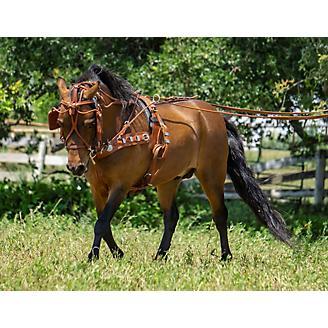 Ozark Min/Pony Western Show Harness