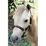 Weavers Tack Mini/Pony Leather/Nylon Halter