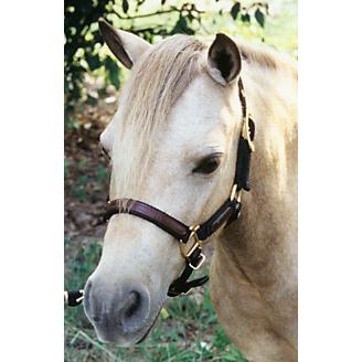 Ozark Mini/Pony Leather/Nylon Halter
