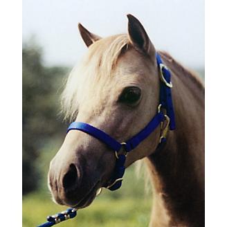 Ozark Mini/Pony Stable Halter