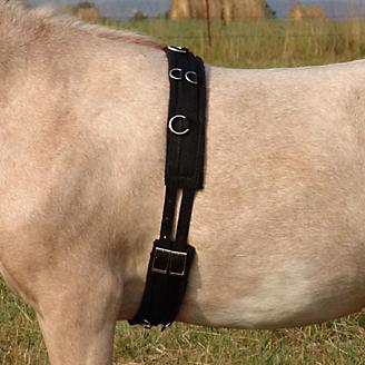 Ozark Mini/Pony Nylon Training Surcingle