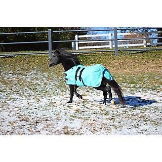 Ozark Mini/Pony Light Waterproof Blanket