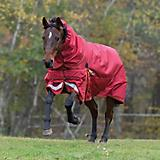 Shires StormCheeta 200G Combo Blanket 84 Red