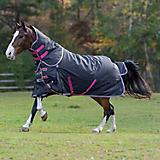 Shires Highlander 200g Standard Neck Turnout 84 Ch