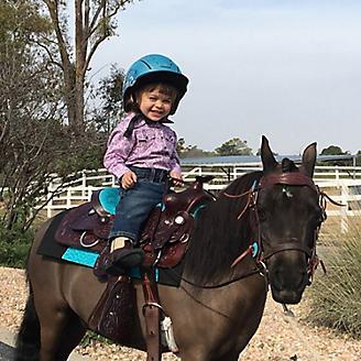 Big Horn Dbl Skirt Saddle Mini w/KneeRoll