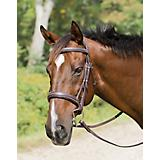 Shires Avignon Wellington Bridle