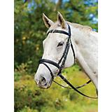Shires Avignon Louisville Bridle