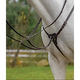 Shires Avignon 3 Point Breastplate