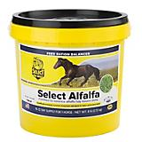 Select the Best Select Alfalfa