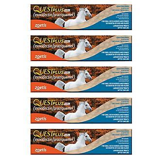 Quest Plus Wormer (moxidectin/praziquantel) 5-Pack