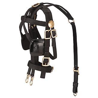 Tough 1 Miniature Harness Bridle